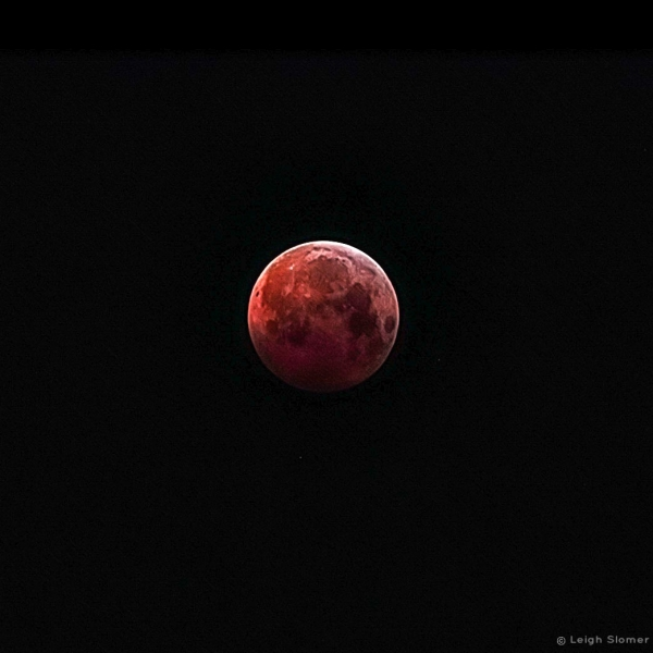 LunarEclipse2019-01-21LeighSlomer_Photo_1548286223273
