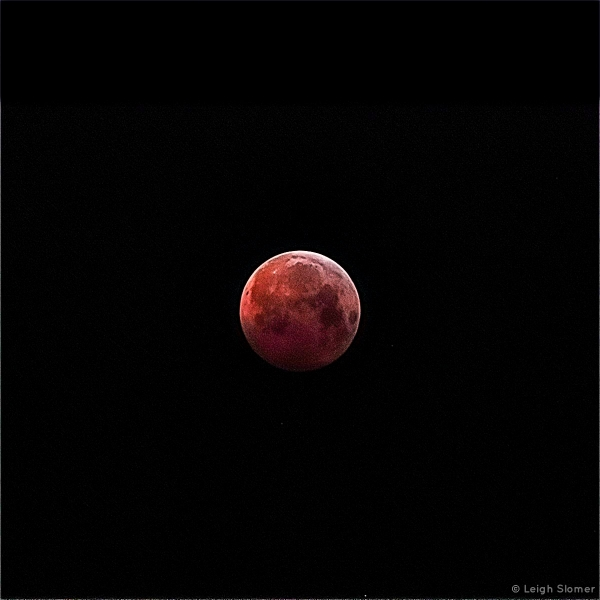 LunarEclipse2019-01-21LeighSlomer_Photo_1548286223856