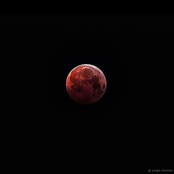 LunarEclipse2019-01-21LeighSlomer_Photo_1548286224148