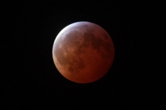 Jan21-2019 Martincrow bloodmoon