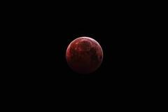 LunarEclipse2019-01-21LeighSlomer_PPhoto_1548286223576