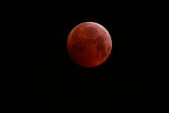 LunarEclipseHomorWheeler21-01-2019