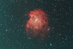 NGC-2174-Monkey-Head-Nebula