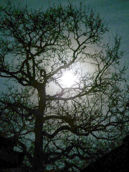 moon_hw01