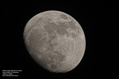 Gallery_HonorWinchester20140411Moon